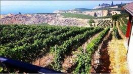 the-naramata-bench-wine